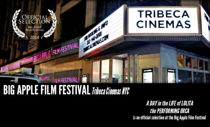 Big Apple Film Fest News Item DA Site Graphic