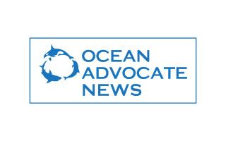 OA News